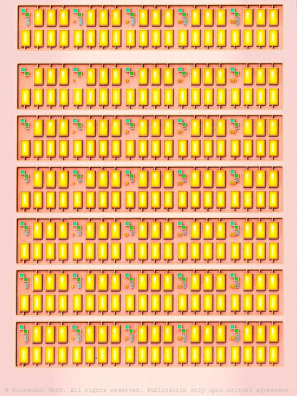 The Diamond Chip